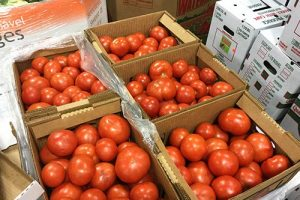boxes of tomatoes 300x200 - boxes-of-tomatoes