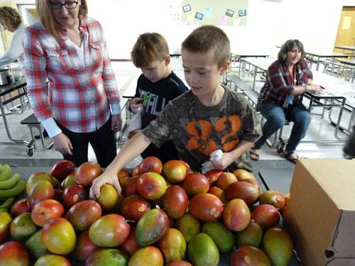 foodbank learn hunger education - Learn