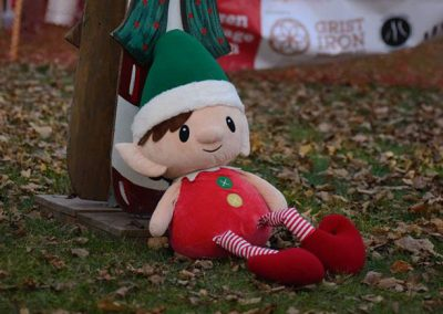 foodbankst-events-selfless-elf-mascot