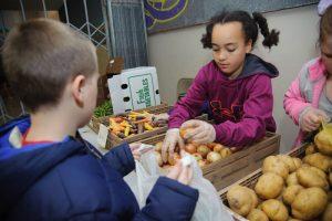 foodbankst kids farmers market girl putting onions in a bag 300x200 - foodbankst-kids-farmers-market-girl-putting-onions-in-a-bag