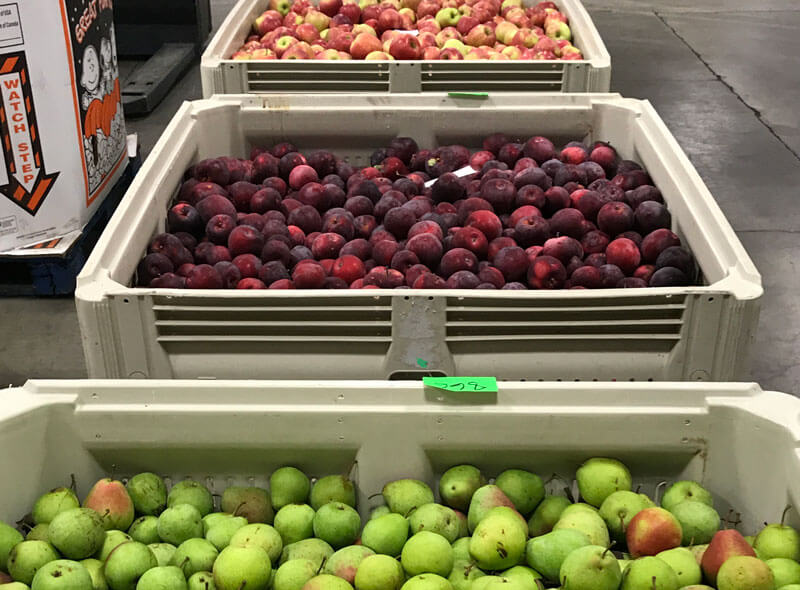 foodbankst totes of fresh fruits - Our Programs